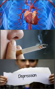 Causes that interfere with erectile health