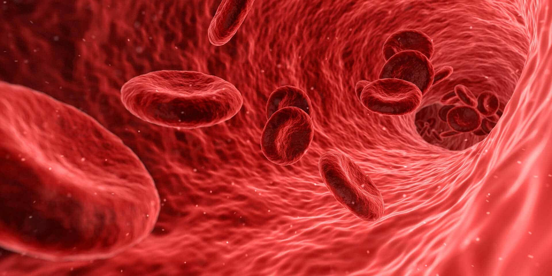Blood flow
